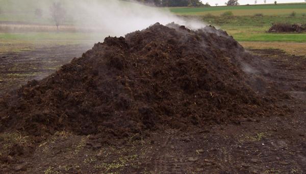 Metcalf-Pacella - Compost